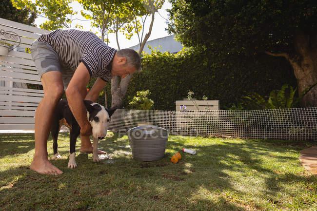 Seitenansicht eines kaukasischen Mannes, der seinen Hund im Garten reinigt — Stockfoto