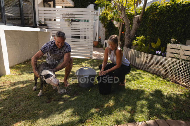 Front view of mature Caucasian couple cleaning their dog in the garden — Stock Photo