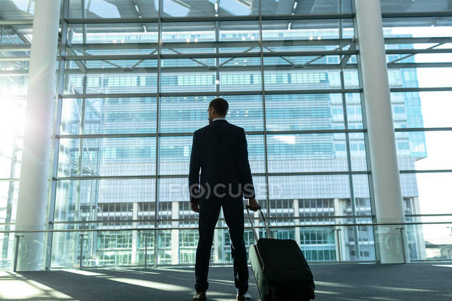 Rear view of businessman with trolley bag standing in the modern office building — Stock Photo