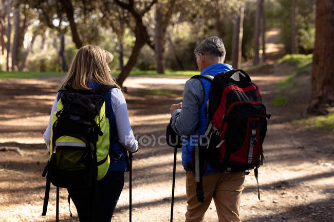 Rear view close up of a mature Caucasian woman and man wearing backpacks and using Nordic walking sticks walking on a trail through a forest during a hike — Stock Photo