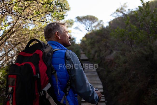 Rear view close up of a mature Caucasian man wearing a backpack looking up at the scenery while walking up hill on a trail during a hike — Stock Photo
