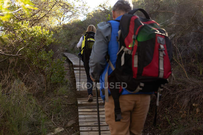 Rear view close up of a mature Caucasian man and woman wearing backpacks and using Nordic walking sticks walking single file uphill on a trail during a hike — Stock Photo