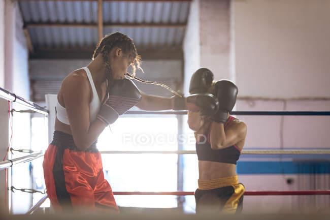 Zwei Boxerinnen kämpfen im Boxring im Fitness-Center. Starke Kämpferin im harten Boxtraining. — Stockfoto