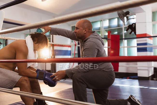 Seitenansicht von einem jungen Boxer mit gemischter Rasse, der in einem Boxring sitzt, während ihm ein kaukasischer Trainer mittleren Alters Wasser auf den Kopf schüttet — Stockfoto