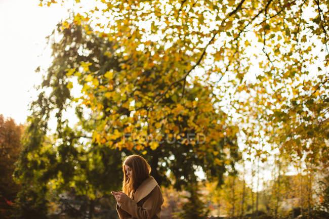 Женщина с помощью мобильного телефона в парке. — стоковое фото