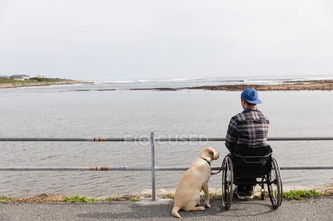 Задній вигляд молодого Кавказького чоловіка в інвалідному візку приймаючи прогулянку з собакою біля моря, милуючись видом — стокове фото