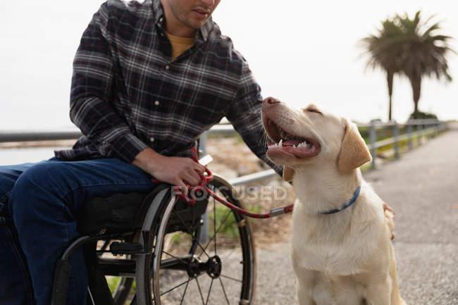 Вид спереду крупним планом молодого Кавказького чоловіка в інвалідному візку приймаючи прогулянку зі своєю собакою в сільській місцевості — стокове фото