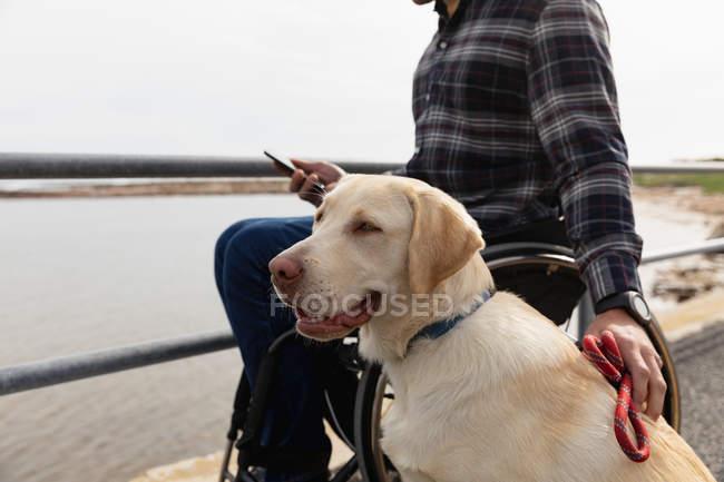 Вид збоку крупним планом молодого Кавказького чоловіка в інвалідному візку приймаючи прогулянку зі своєю собакою в сільській місцевості біля моря — стокове фото