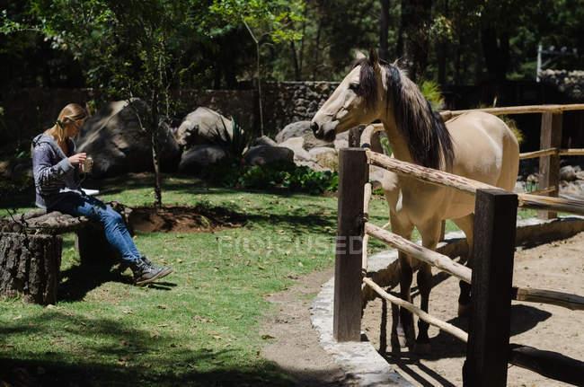Mujer bebiendo mientras está sentada en el rancho durante el día soleado - foto de stock
