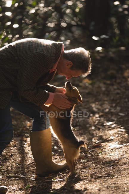 Älterer Mann mit Hund im Wald — Stockfoto
