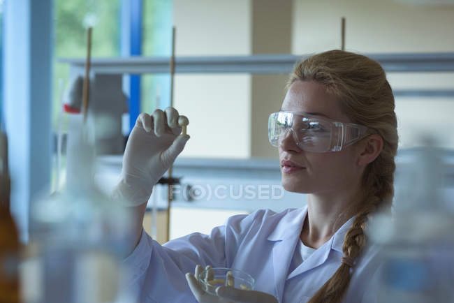 Studente universitario attento fare un esperimento in laboratorio — Foto stock