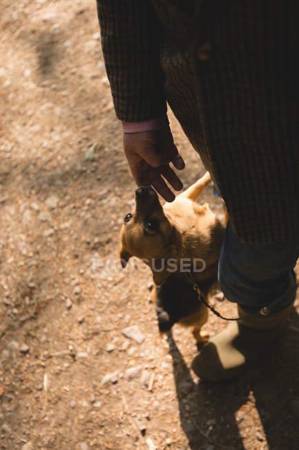 Mann mit Hund im Wald — Stockfoto