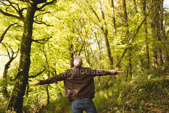 Rear view of man standing with arms outstretched in forest on a sunny day — Stock Photo