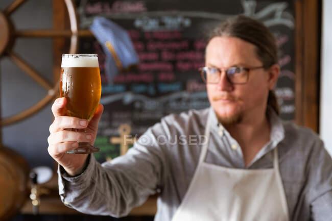 Белый мужчина, работающий в пивоварне, одетый в белый фартук, осматривающий пинту пива, держащий его перед собой. — стоковое фото