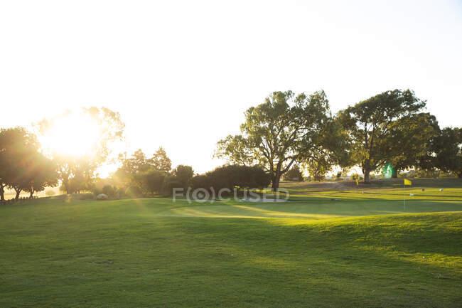 Закат над зеленой лужайкой поля для гольфа, скрывающейся за деревьями, с желтым флагом посреди поля — стоковое фото