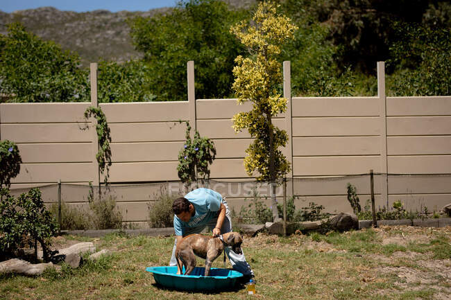 Front view of a male volunteer at an animal shelter, washing a dog standing in a blue plastic bathtub on a sunny day. — Stock Photo