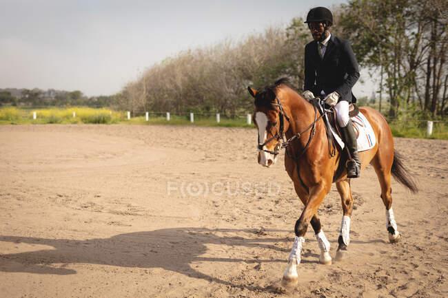 Вид спереди на ловко одетого афро-американского всадника верхом на каштановой лошади в загоне на мероприятии по конкуру в солнечный день. — стоковое фото