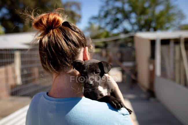 Visão traseira close-up de uma voluntária vestindo uniforme azul em um abrigo animal segurando um filhote de cachorro resgatado em seus braços. — Fotografia de Stock