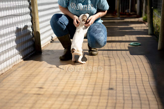 Front view low section of a female volunteer wearing a blue uniform at an animal shelter petting a rescued puppy in her arms. — Stock Photo
