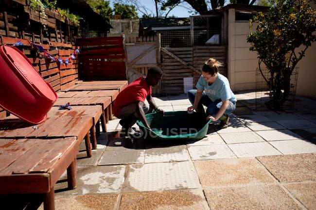 Бічний вид на волонтерів у притулку для тварин, які готують зелене пластмасове миття для собак.. — стокове фото