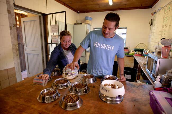 Перед очима чоловіки і жінки добровольці в притулку для тварин у кімнаті, де готують для своїх собак багато миски з їжею.. — стокове фото