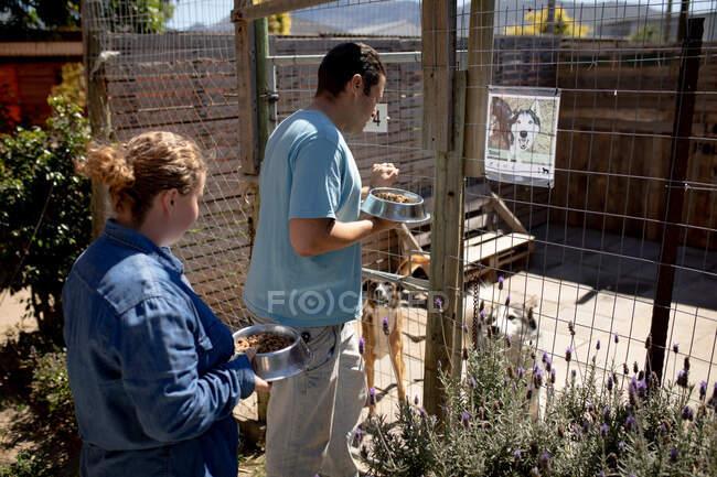 Бічний вид самця і самиці добровольців у притулку для тварин, які тримають миски з собачою їжею, відкриття клітки з двома собаками всередині.. — стокове фото