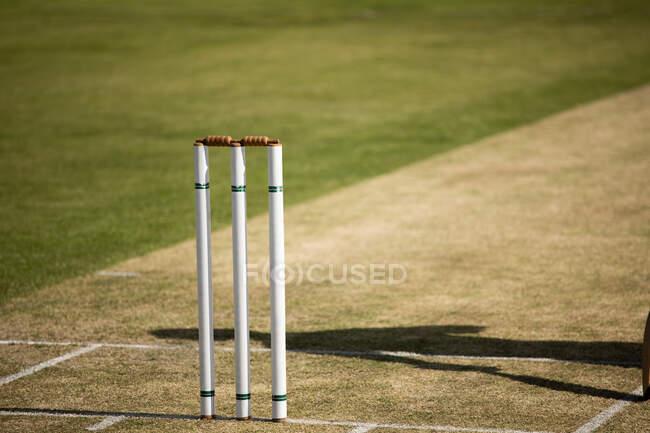 Nahaufnahme einer Cricket-Stümpfe, die an einem sonnigen Tag auf einem Cricketplatz stehen, neben dem Wicket ist der Schatten eines Spielers zu sehen. — Stockfoto