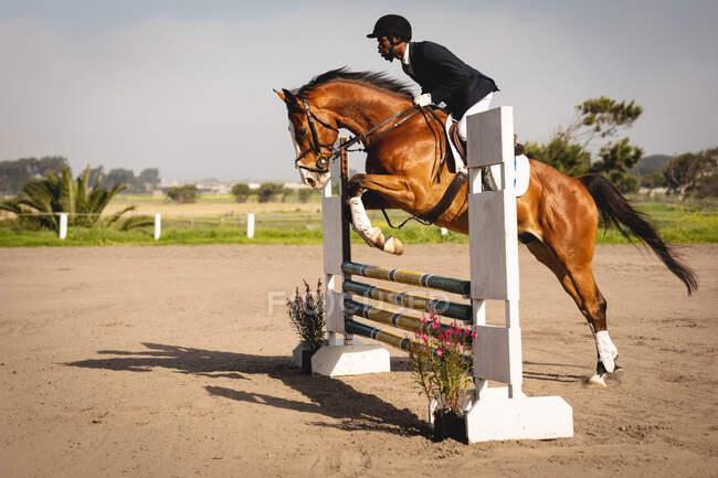 Вид сбоку на ловко одетого афроамериканца, скачущего на каштановой лошади на соревнованиях по конкуру, перепрыгивающего через забор в солнечный день. — стоковое фото