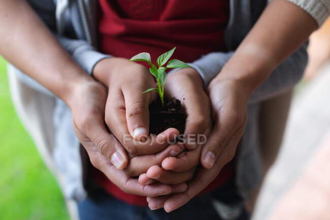 Femme et fille tenant une plante. auto isolement qualité famille temps à la maison ensemble pendant coronavirus covid 19 pandémie. — Photo de stock