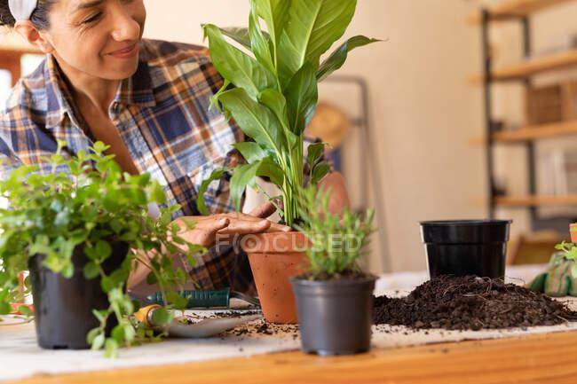 Улыбающаяся кавказка, выкладывающая растения дома. Оставаться дома в изоляции во время карантинной изоляции. — стоковое фото