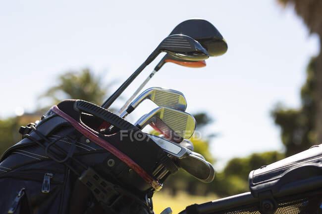 Glänzende Golfschläger, die an einem sonnigen Tag in einer Golftasche stehen. Golf-Sport-Hobby, gesunder Lebensstil im Ruhestand. — Stockfoto