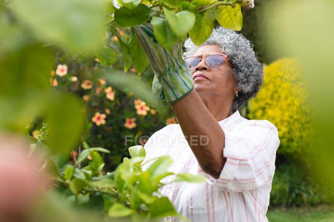 Nachdenkliche afrikanisch-amerikanische Seniorin mit Gartenhandschuhen beim Laubschneiden im Garten. Isolation in Quarantäne — Stockfoto