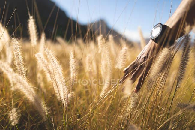 На схилах високих трав на сонці в гірських районах з афроамериканською рукою. Краса природи в літній час, спокій у розслабленні мальовничого місця. — стокове фото