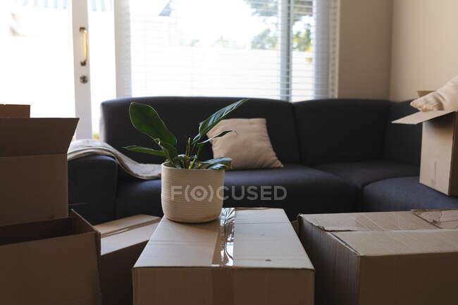 Montón de cajas preparadas antes de mover la casa al lado del sofá. estilo de vida doméstico, pasar tiempo libre en casa. - foto de stock