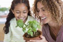 Счастливые мать и дочь держат базилик завод — стоковое фото