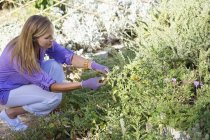 Giovane donna che lavora nel giardino estivo — Foto stock