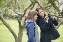 Donna con figlia adolescente che guarda ramo d'albero nel frutteto — Foto stock