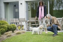 Couple playing with cute dog on lawn in garden — Stock Photo