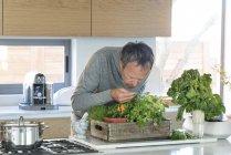 Зрелый мужчина, нюхающий траву на кухне — стоковое фото
