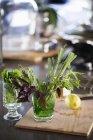Травы в очках, селективная фокусировка — стоковое фото