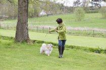 Женщина играет с собакой на зеленой лужайке в сельской местности — стоковое фото