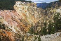 Colorido Gran Cañón de Yellowstone, Parque Nacional de Yellowstone, Patrimonio de la Humanidad por la UNESCO, Wyoming, Estados Unidos de América, América del Norte - foto de stock