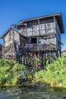 Мьянма, регион Шань, озеро Инле, деревянный домик на сваях посреди плавучих садов — стоковое фото
