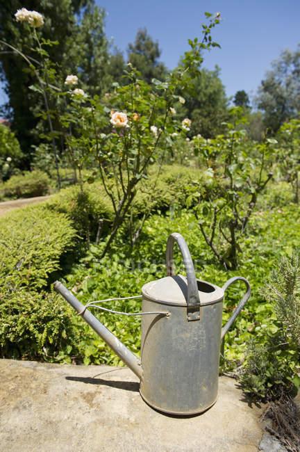 Полив банки на скале в саду, избирательный фокус — стоковое фото