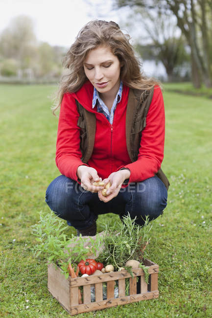 Woman putting fresh picked vegetables in crate on lawn — Stock Photo
