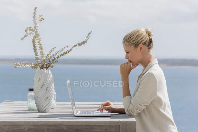 Young elegant woman using laptop at wooden table on lake shore — Stockfoto