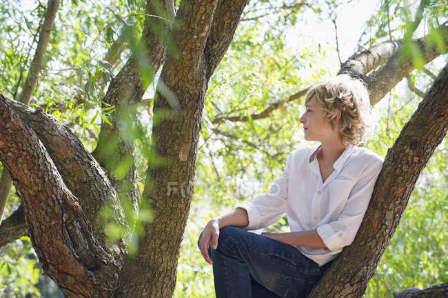 Споглядальний підлітком, сидить на гілці дерева в літо — стокове фото