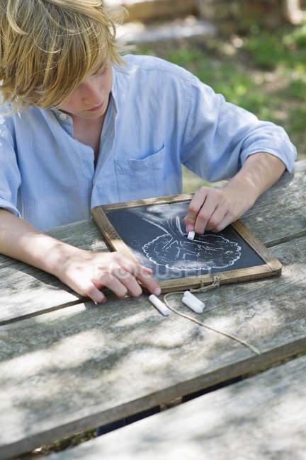 Teenage boy making drawing of tree on slate outdoors — Stock Photo