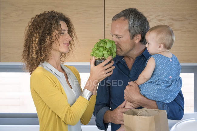 Mature man smelling potted herb plant in kitchen with baby daughter — Stock Photo
