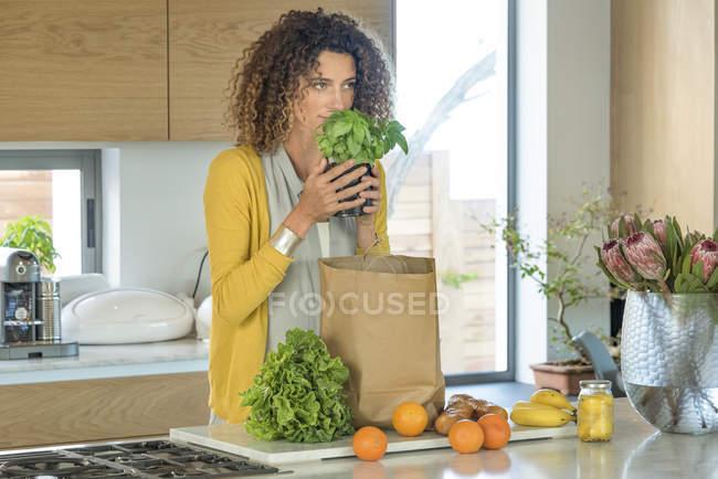 Frau riecht Kräutertopfpflanze in Küche — Stockfoto